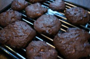 chocolate and cashew nut cookies